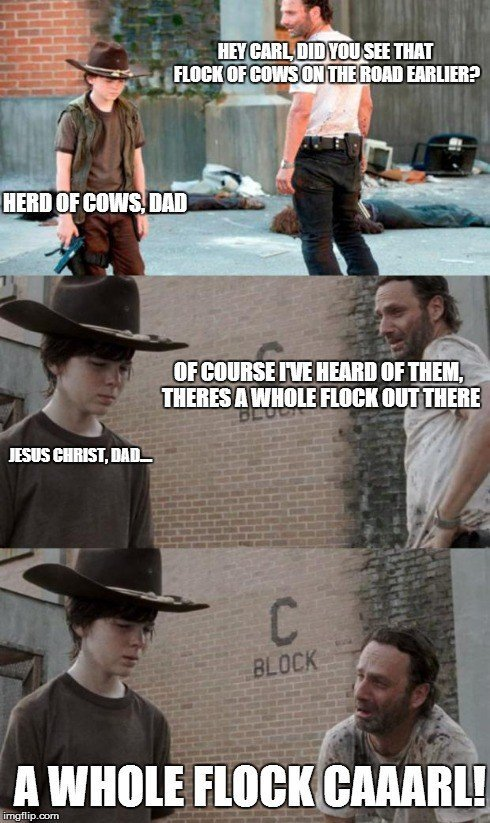 "Walking Dead Memes Coral Walking Dead ""coral"" Meme List"